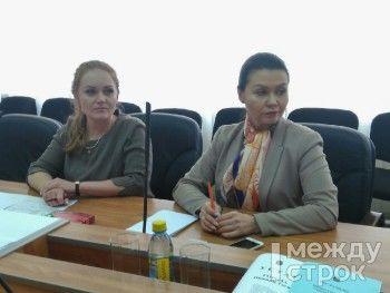 Депутатам городской думы представили нового директора «Тагил-ТВ»