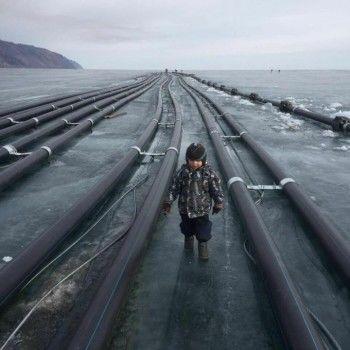 Суд приостановил строительство завода по розливу питьевой воды на берегу Байкала