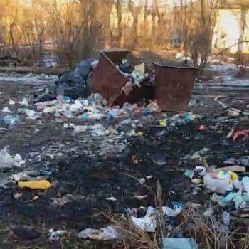«Это натуральный шок». Жители Сухоложского жалуются на огромную свалку в посёлке