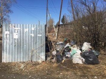 Жители села Николо-Павловское под Нижним Тагилом жалуются на отсутствие мусорных контейнеров и несанкционированные свалки