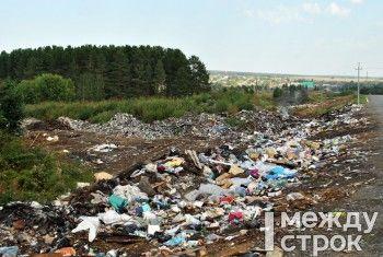 «Кошмар что творится». Жители села под Нижним Тагилом жалуются на огромную свалку