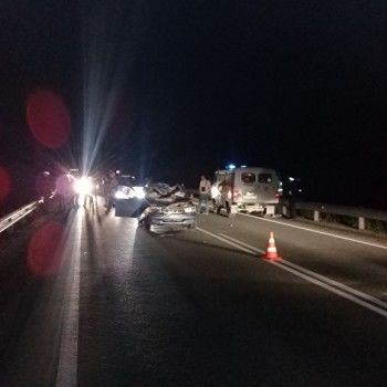 Автомобиль Daewoo сбил лося под Екатеринбургом. Водитель и животное погибли