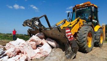 Правительство поддержало отказ от уничтожения санкционных продуктов бульдозерами