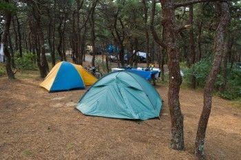 В Свердловской области закрыли детский палаточный лагерьиз-за многочисленных нарушений