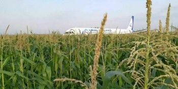 Жёсткая аварийная посадка самолёта «Уральских авиалиний» вПодмосковье. Главное
