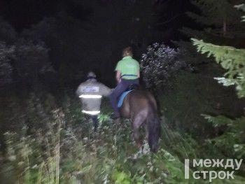 В Нижнем Тагиле оперативные службы вытащили из болота женщину на коне