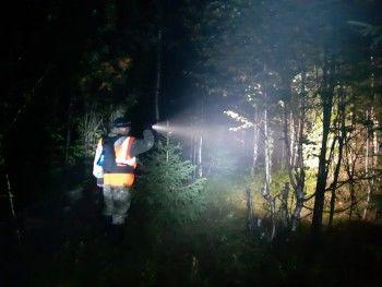 Под Нижним Тагилом спасатели вторые сутки ищут в лесу бабушку с внучкой