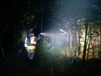Пропавшие под Нижним Тагилом бабушка и внучка вышли из леса спустя сутки