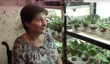 У продающей фиалки героини фильма Дудя о Беслане за два дня раскупили все цветы