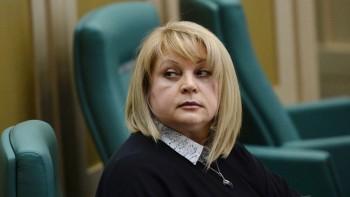 Подозреваемый в нападении на Эллу Памфилову признал свою вину