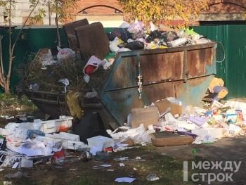 «Платить стали больше, а ничего не изменилось». Жители целого квартала в Нижнем Тагиле жалуются на постоянный «свинарник» из-за невывоза мусора
