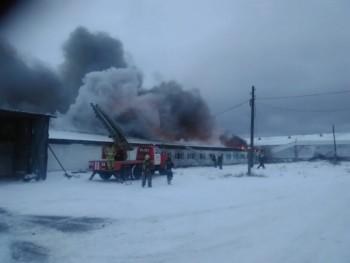 В Нижнем Тагиле на складе птицефабрики произошёл пожар (ВИДЕО)