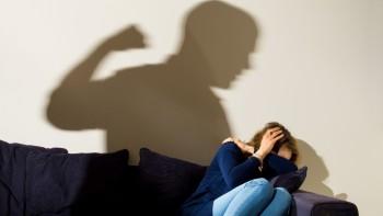 Авторы законопроекта о домашнем насилии пожаловались на угрозы в соцсетях