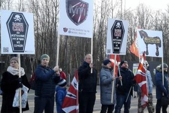 В Москве на митинг против закона о домашнем насилии пришли всего 200 человек
