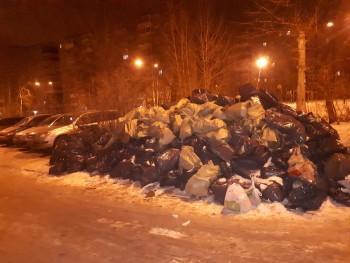 Соцсети: Коммунальщики почти месяц не вывозят мусор в Нижнем Тагиле