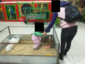 «Форменный контактный зоопарк в магазине, а хозяину закон что ли не писан?» Открытие выставки животныхв торговом центре Нижнего Тагила обернулось скандалом