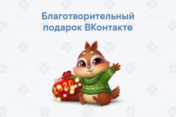 Крупнейшая в России соцсеть «ВКонтакте» направит выручку от новогоднего подарка с бурундуком Квипом тагильскому фонду «Живи, малыш»