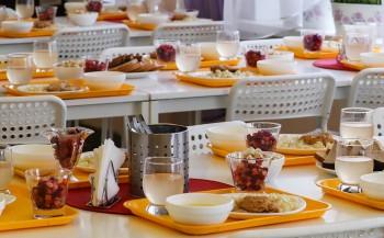 Свердловскую область исключили изпрограммы субсидирования горячего питания вшколах