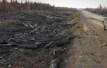 ВСибири общая площадь лесных пожаров превысила 100 тысяч га