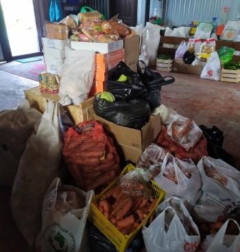 «Мы не ожидали такого!» Зоопарки Нижнего Тагила приостанавливают сбор продуктов для животных