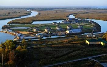 «Проект»: УДмитрия Медведева есть секретный остров для рыбалки наВолге