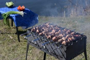 С 1 мая в Свердловской области запрещено жечь траву и жарить шашлыки