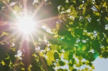 В День Победы жителей Нижнего Тагила ждёт солнце и плюс 28 градусов