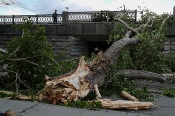 В Свердловской области скончалась четвёртая жертва урагана