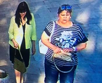 В Нижнем Тагиле полиция ищет двух подозреваемых в краже сумки у пенсионерки