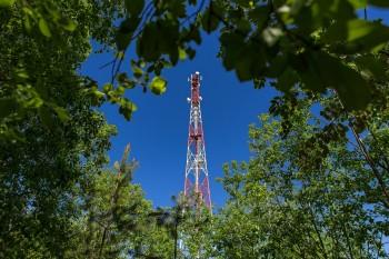 МегаФон установил онлайн-наблюдение за лесами Свердловской области для предотвращения пожаров