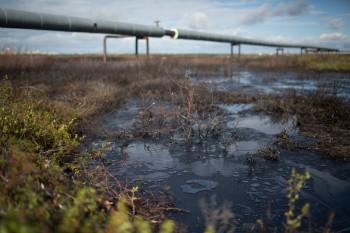 На севере Свердловской области из нефтепровода разлилось 8 кубометров нефти
