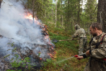 В уральском заповеднике «Денежкин Камень» горит 5,5 гектара леса