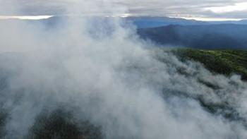 Площадь лесного пожара в заповеднике «Денежкин Камень» за сутки увеличилась до 19 гектаров