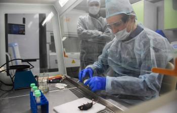 ТАСС: Российскую вакцину против коронавируса собираются производить в Бразилии