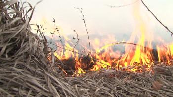 В Свердловской области объявлено экстренное предупреждение из-за высокой пожарной опасности