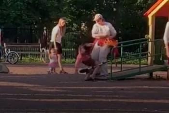 В Санкт-Петербурге женщина избила незнакомую 11-летнюю девочку на детской площадке (ВИДЕО)