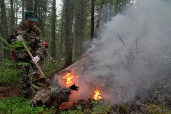 Стерритории заповедника «Денежкин Камень» вывели 46 пожарных