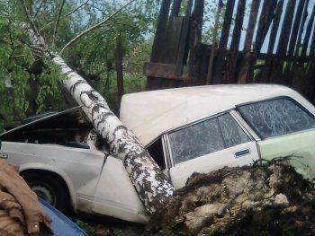 «Росгосстрах» выплатит пострадавшим от урагана в Свердловской области более 6 млн рублей