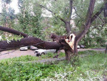 В Златоусте ураган унёс домик с человеком внутри (ВИДЕО)