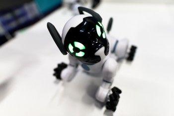 Роботы ждут вас!
