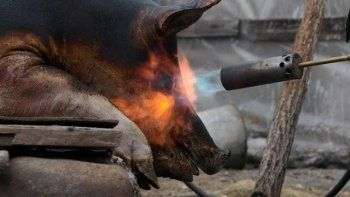 В Омске сожгли 20 тонн санкционного сала