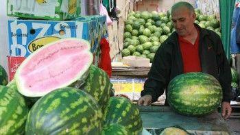 В Свердловской области появились первые арбузы