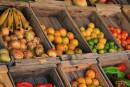 С 1 мая в Нижнем Тагиле начнут работать 30 сезонных торговых палаток