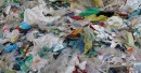 В России могут сократить производство пластиковых пакетов